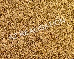 AZ REALISATION - Paulhan - Béton drainant coloré : PAILLE